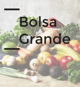 bolsa_grande_on